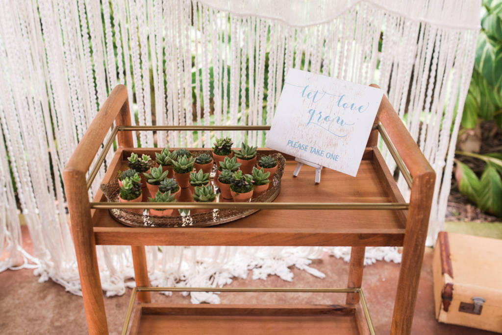 succulent_favors_teak_macrame_wedding