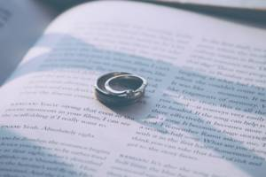 weddingrings_novel_title