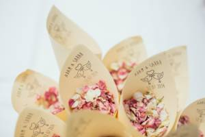 rose_petals_dried_flowers_flower_confetti_paper_cone